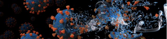 HEXIS: les films Pure Zone efficaces contre le SARS-CoV-2